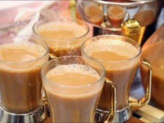 شاي كرك السعودي